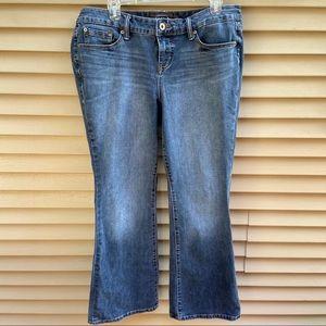 Torrid Premium boot cut blue jeans